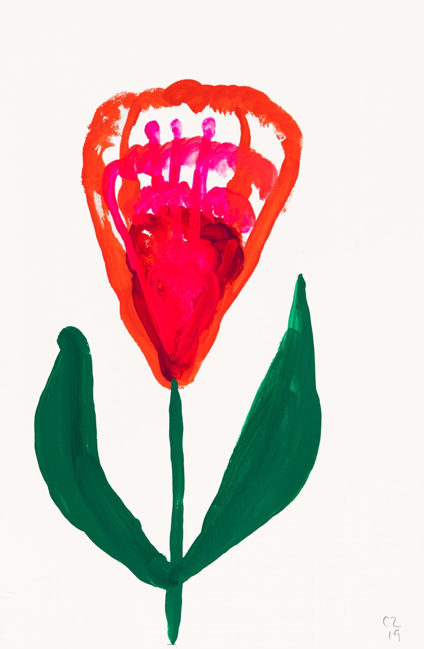 Pink and red botanical painting by Christina Zimpel.
